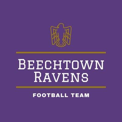 Purple and Brown Eagle American Football Logo