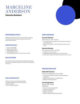 Resume Profesional