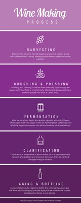 Purple Blocks Timeline Infographic