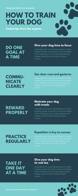 Blue Paw Print Dog Process Infographic