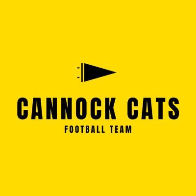 Black and Yellow Flag American Football Logo