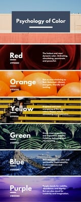 Colour Psychology Infographic
