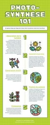 Infographie pour le secteur de l'enseignement